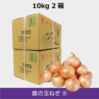 T-M10kg-2box-2size