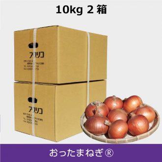 T-O10kg-2box-2size